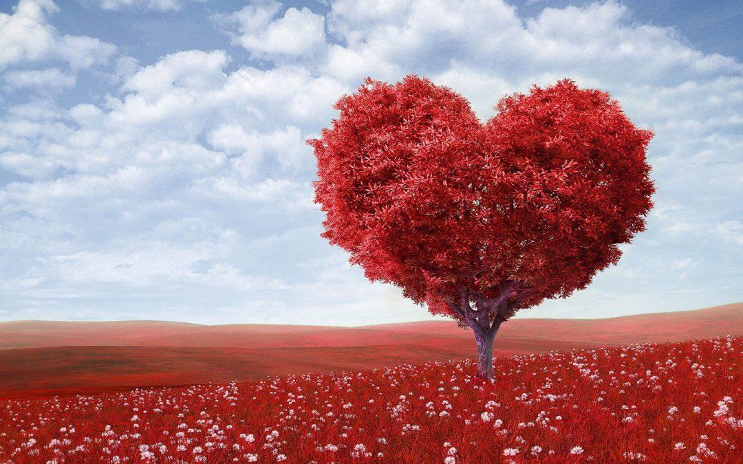 Volunteer for Love