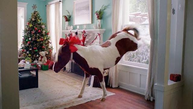 I would like a Pony for Christmas!